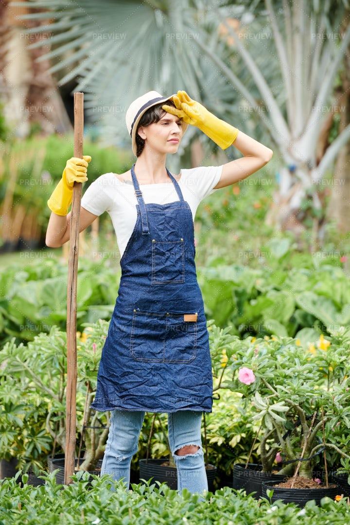 Tired Female Gardener: Stock Photos