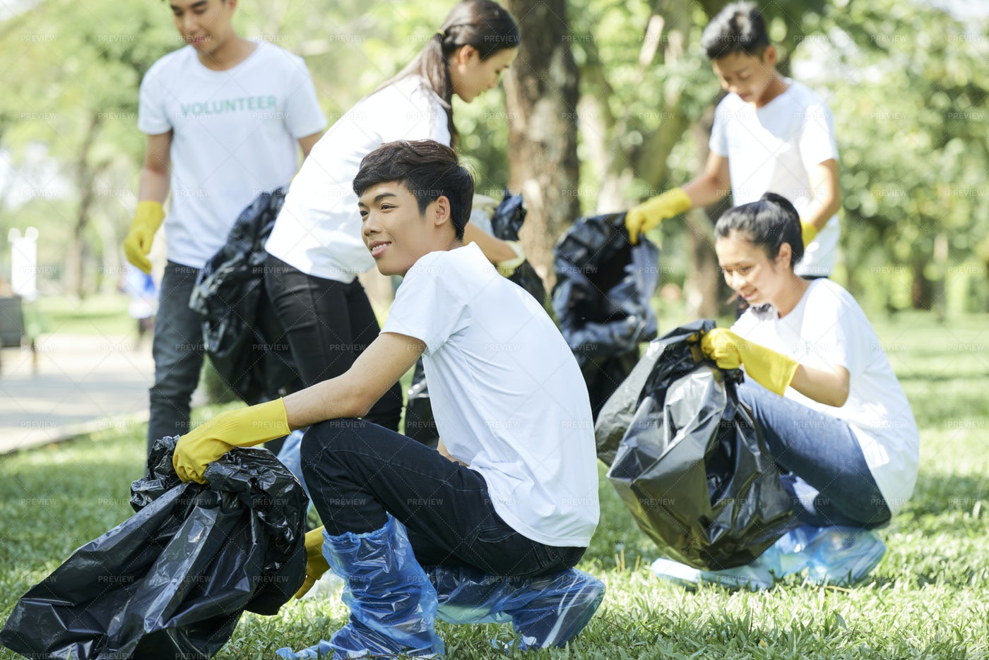 Teenagers Clean The Forest: Stock Photos