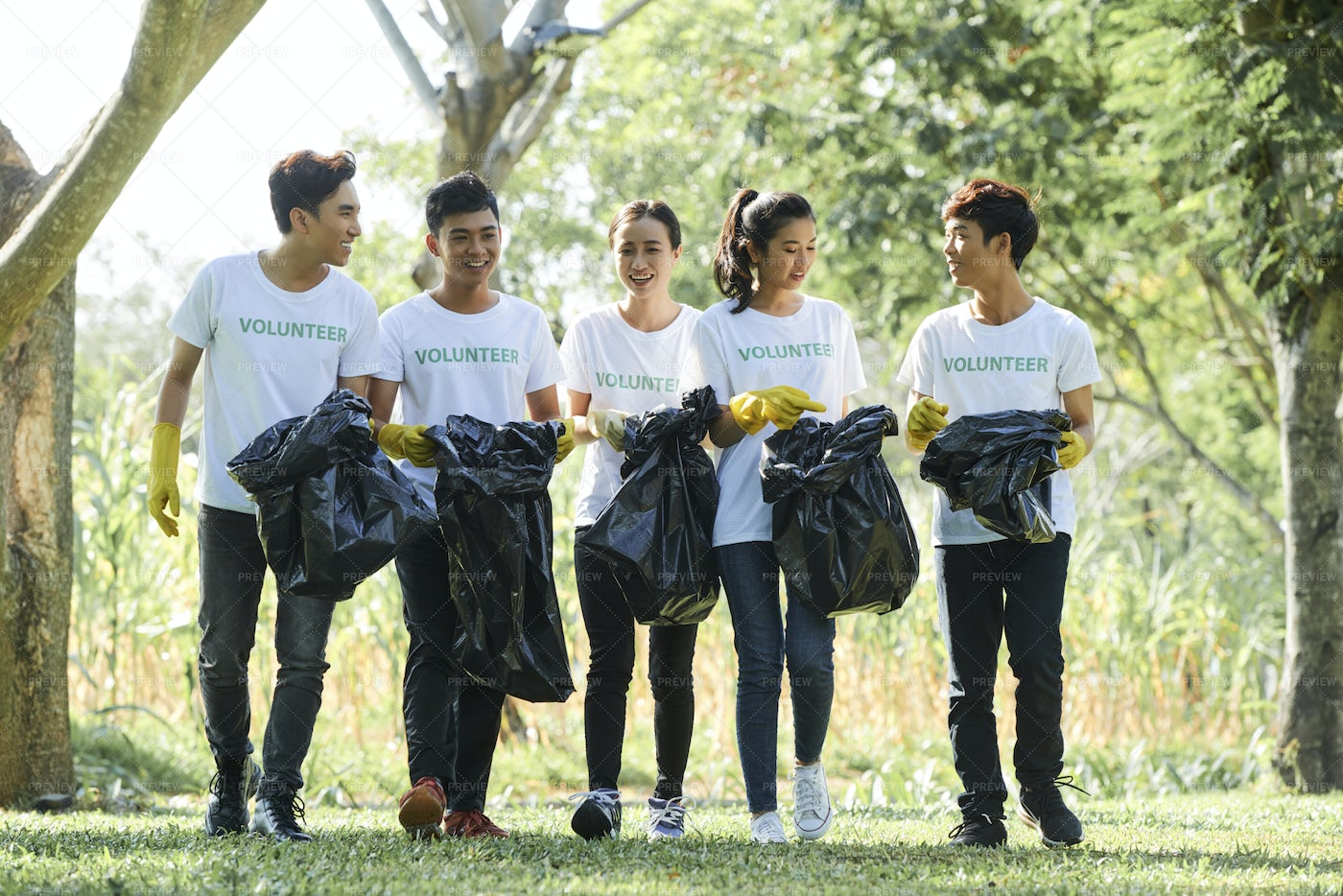 Volunteers Cleaning The Park: Stock Photos