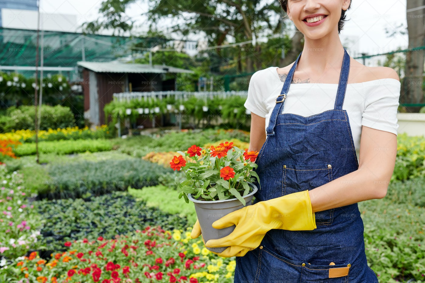 Gardening And Horticulture Concept: Stock Photos
