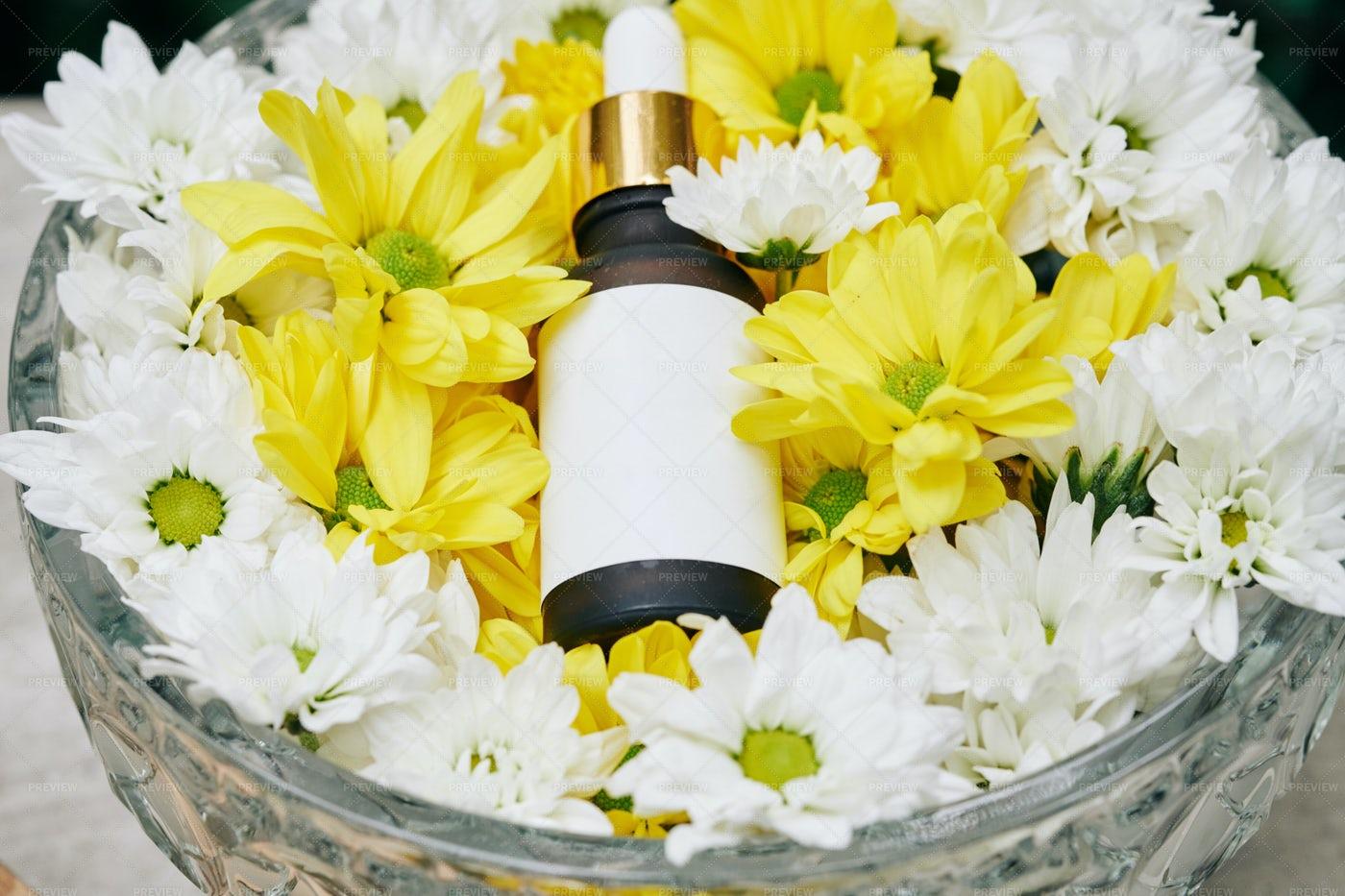 Expensive Rejuvenating Serum: Stock Photos