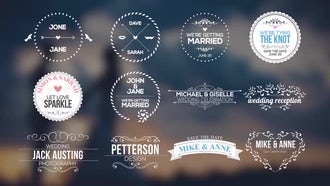 Wedding Badges And Titles: Motion Graphics Templates