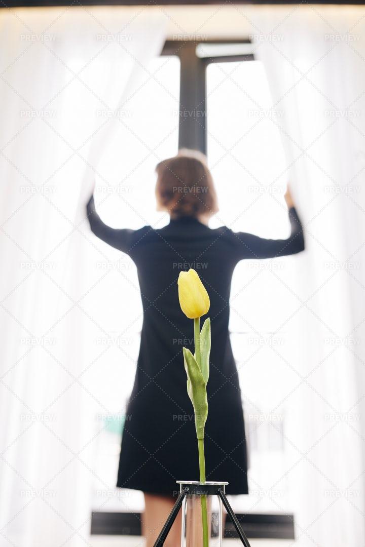 Tender Flower In Small Vase: Stock Photos