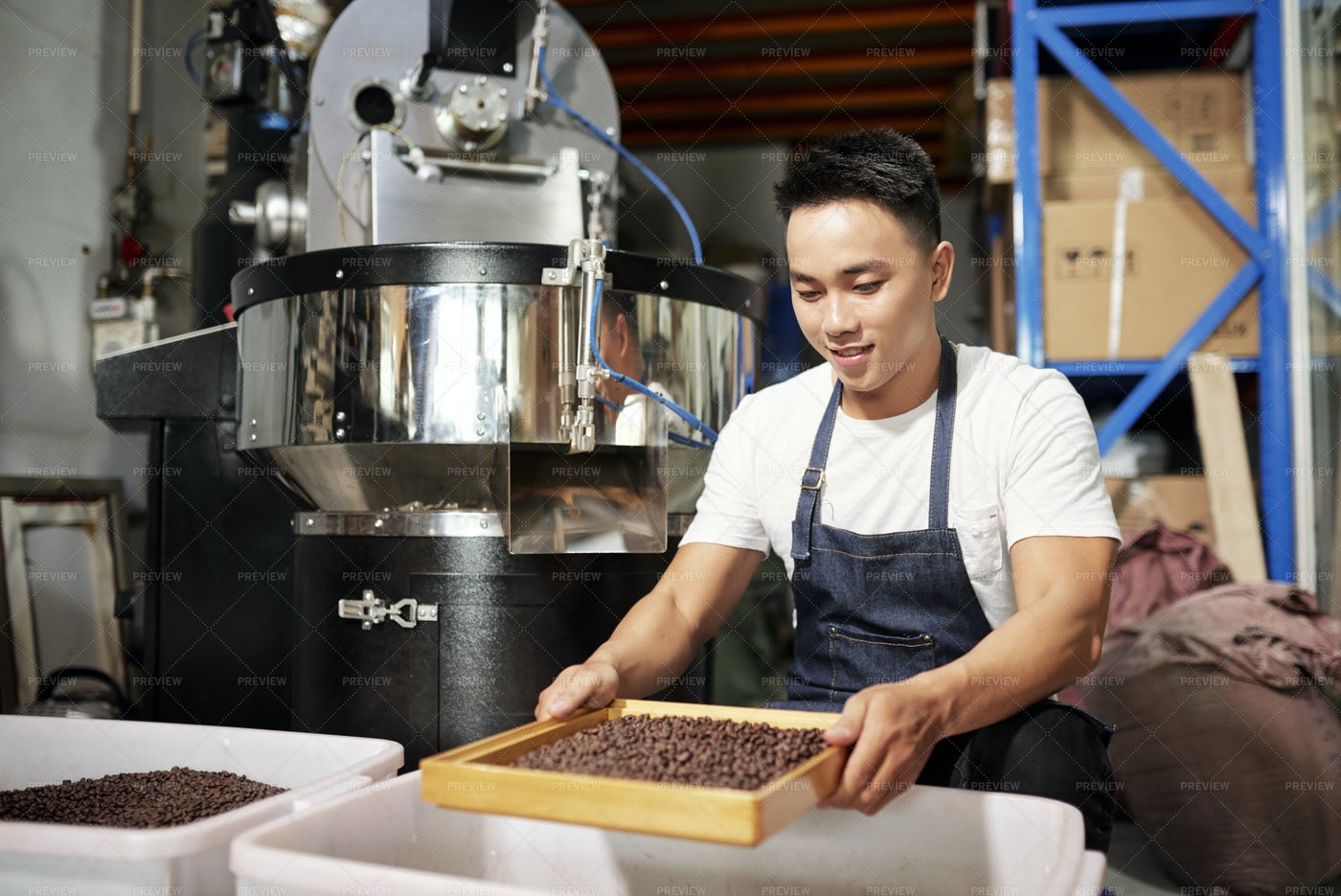 Man Processes Coffee Beans: Stock Photos