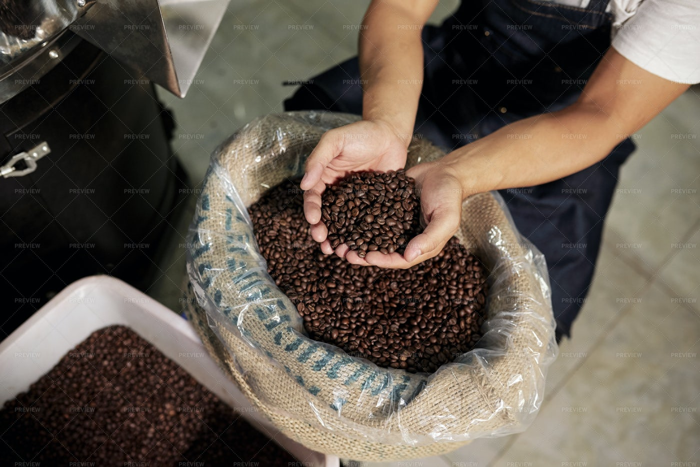 Man Examining Coffee Beans: Stock Photos
