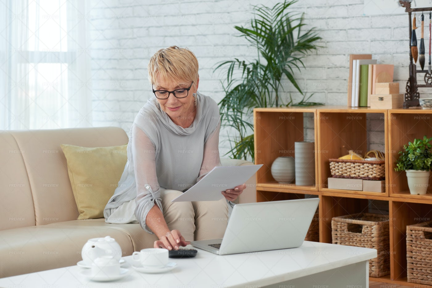Businesswoman Working At Home: Stock Photos