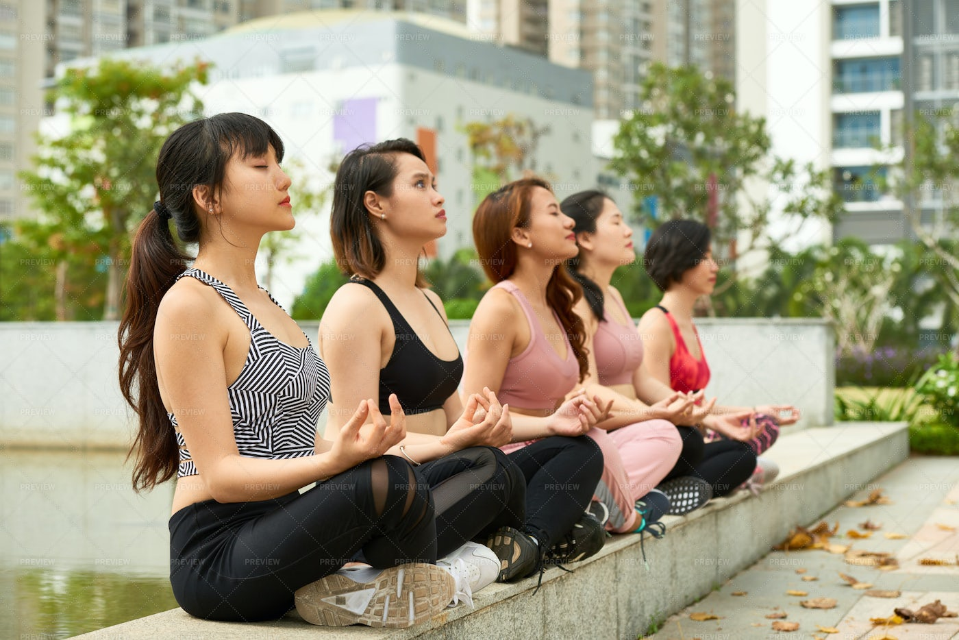 Group Of Women Meditating In Park: Stock Photos