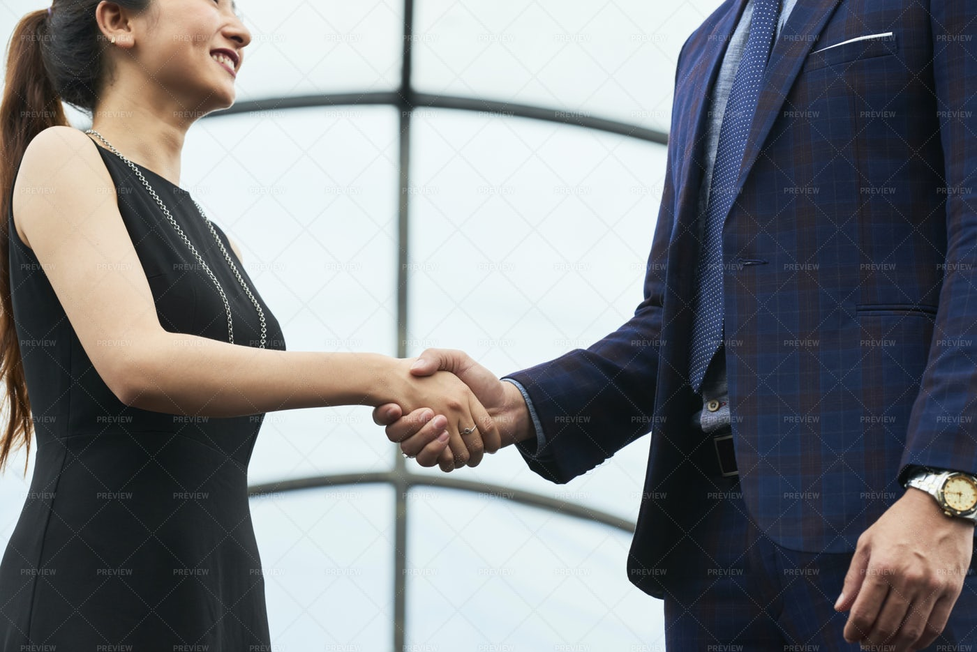 Firm Handshake: Stock Photos