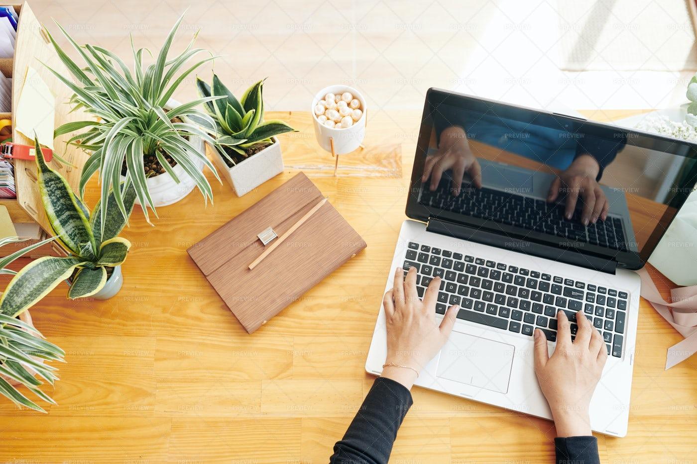 Businesswoman Working On Laptop: Stock Photos