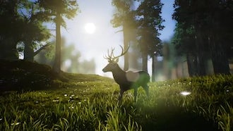 Lonely Deer 1: Motion Graphics