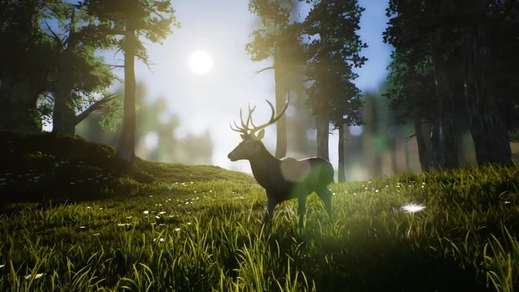 Lonely Deer 1: Stock Motion Graphics