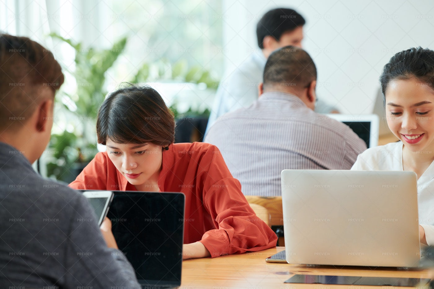 People Using Laptops At Office: Stock Photos