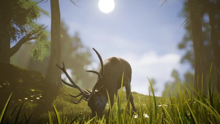 Lonely Deer 4: Stock Motion Graphics