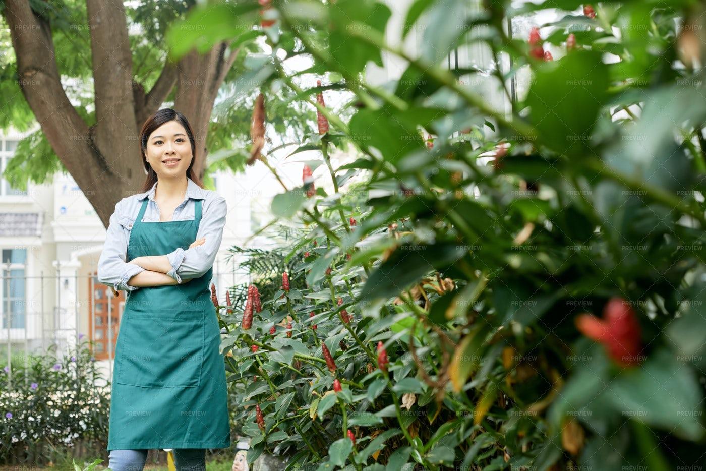 Garden Worker Checking Bushes: Stock Photos