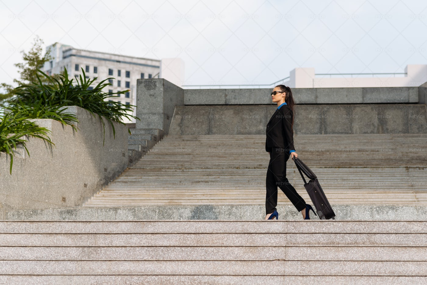 Business Lady On Stairs: Stock Photos