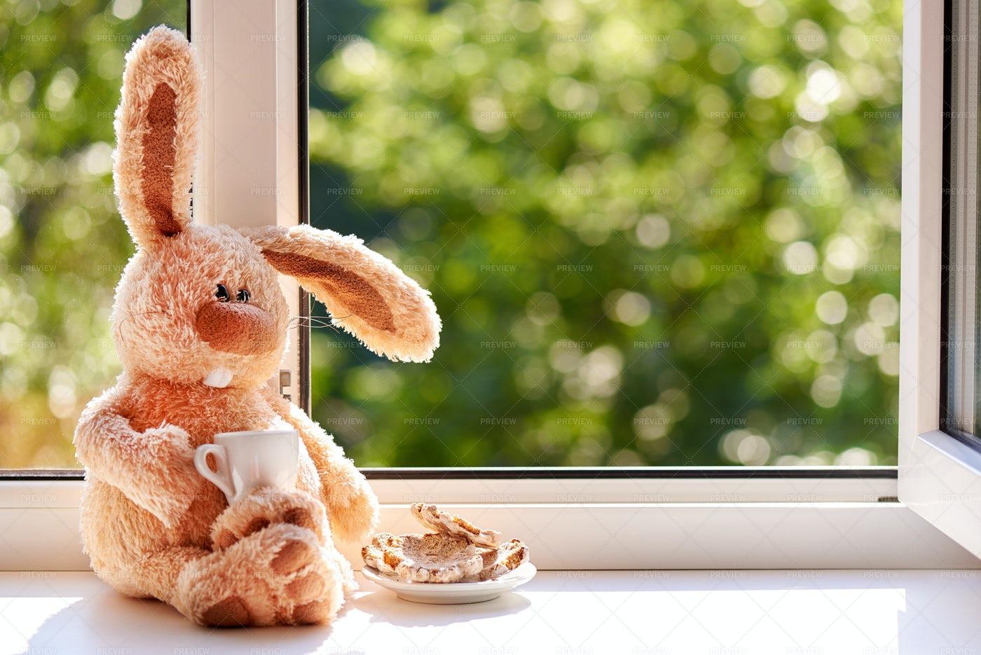 Rabbit Next To Open Window.: Stock Photos