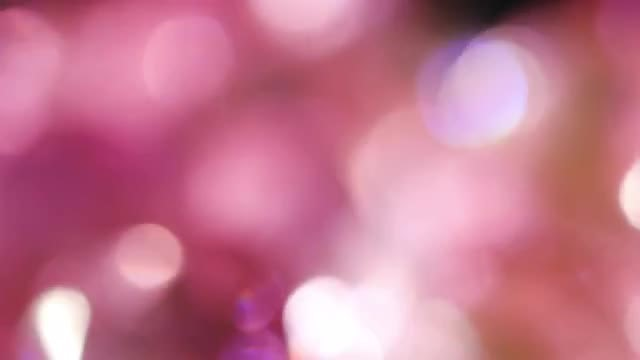 Pink Circles Bokeh: Stock Video
