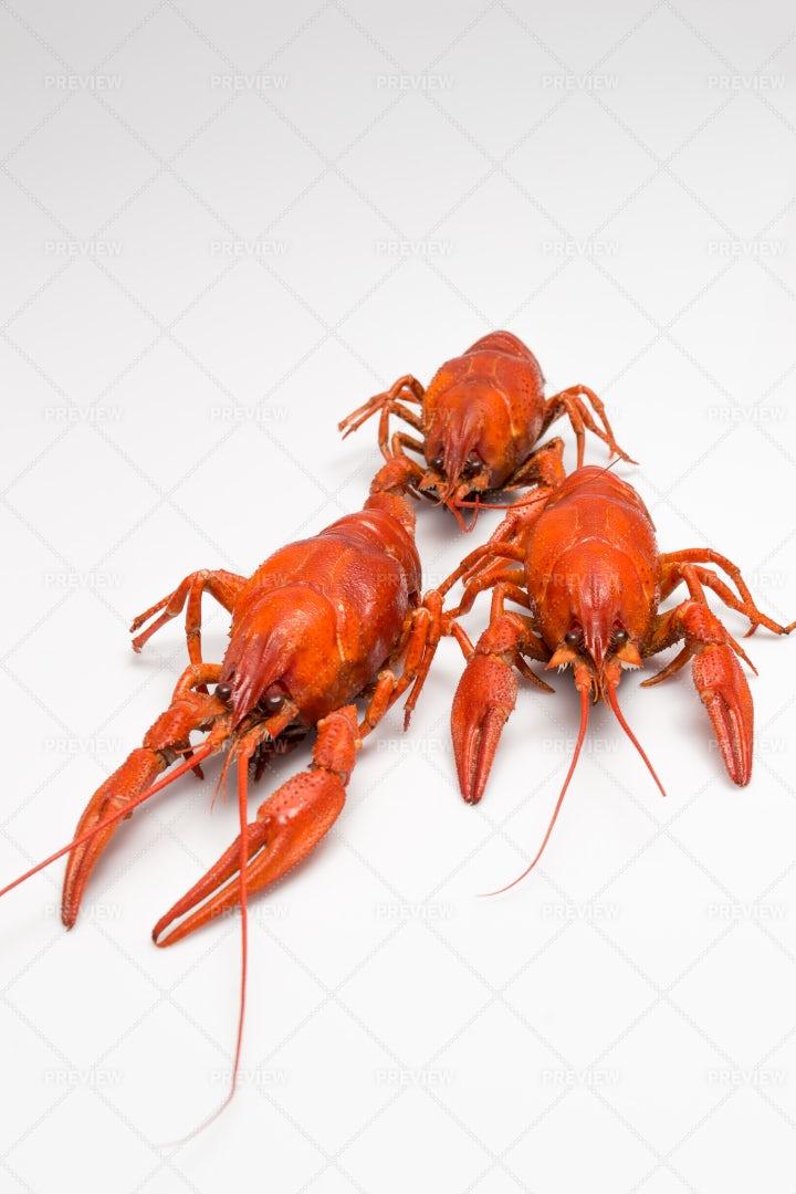 Five Boiled Crawfish: Stock Photos