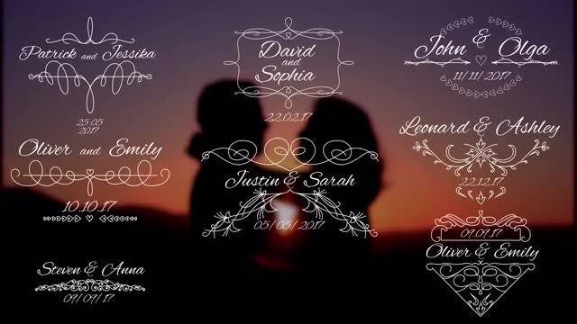 8 Wedding Titles V3: Premiere Pro Templates