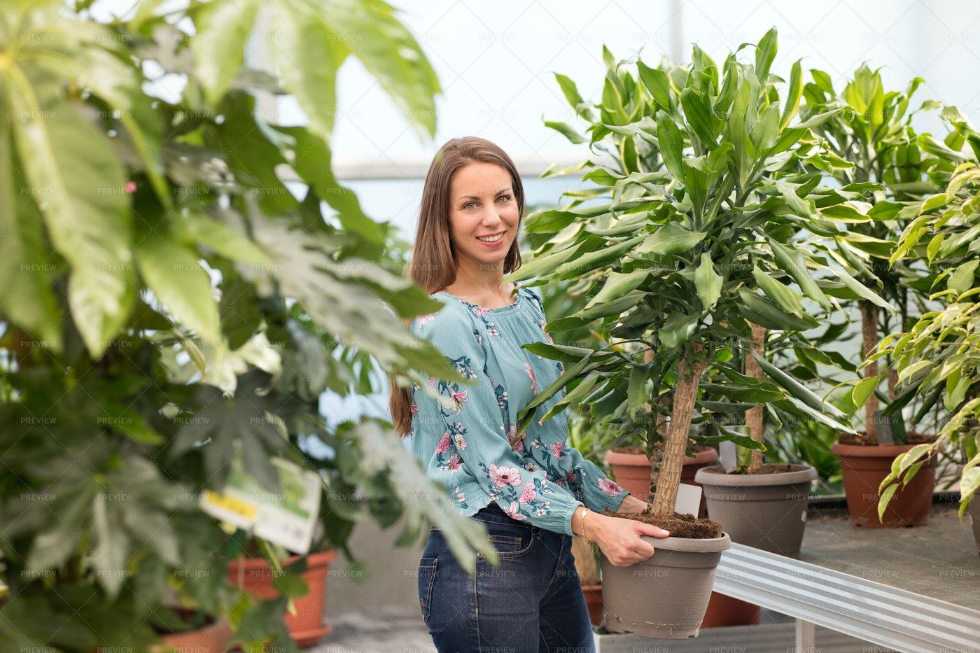 Woman Buys A Plant: Stock Photos