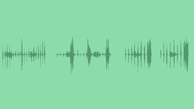 Chicken SFX Pack: Sound Effects