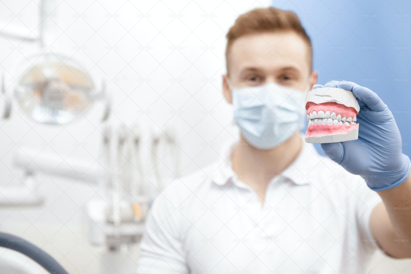 Dentist With Mold: Stock Photos