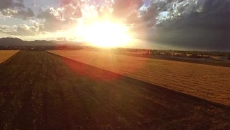 Sunset Crane Up: Stock Video