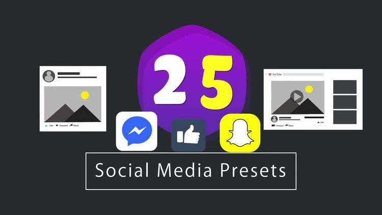 Infographic Presets : 25 Social Media Icons: After Effects Templates