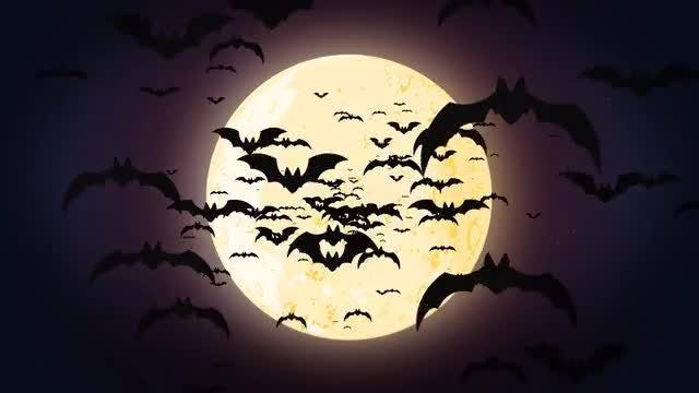 Halloween Bats: Stock Motion Graphics