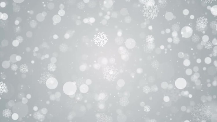 Snow Particles White Background: Motion Graphics