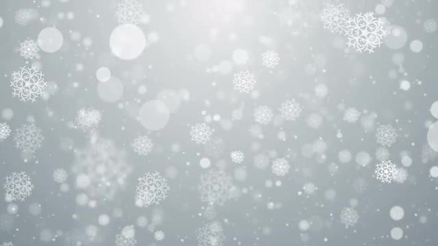 Snow Particles White Background: Stock Motion Graphics