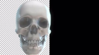 Skull Transitions Pack 4K: Motion Graphics