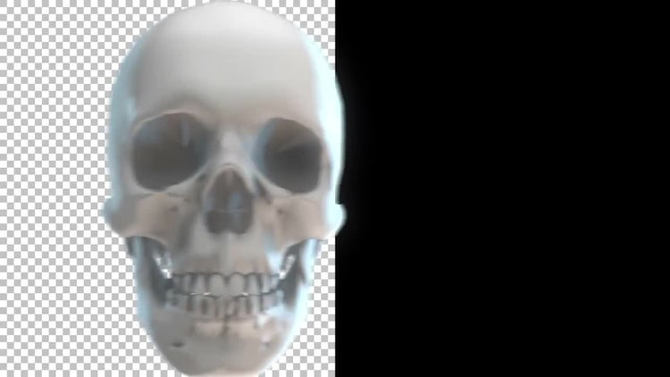 Skull Transitions Pack 4K: Stock Motion Graphics