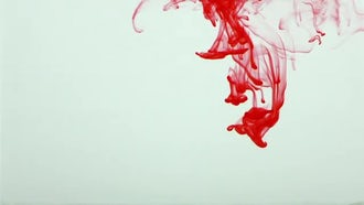 Red Ink Spread in Water: Stock Video