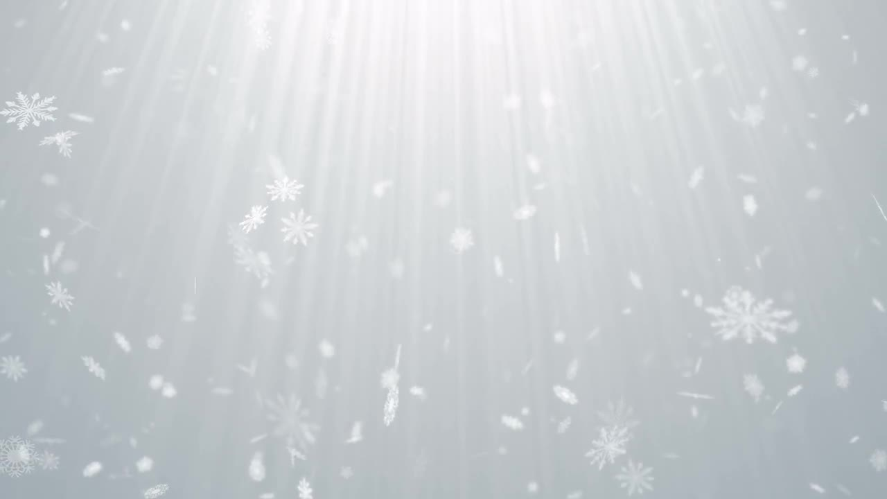 Snow Particles White Background Stock Motion Graphics Motion Array