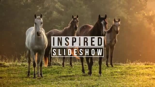 Inspired Slide: After Effects Templates