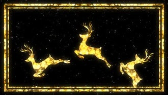Christmas Reindeer : Motion Graphics