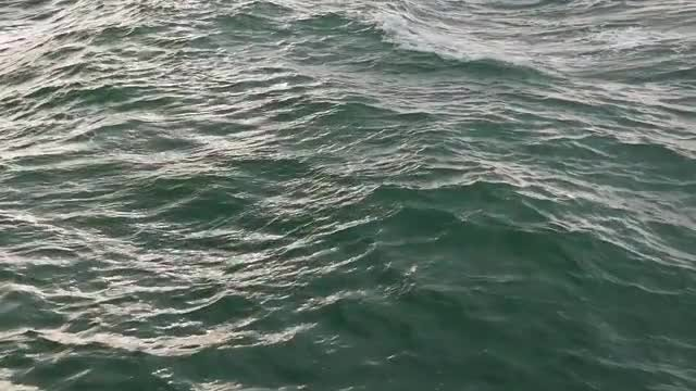 Ocean Water: Stock Video