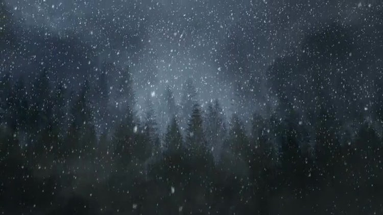 Winter Night Backgrounds: Stock Motion Graphics