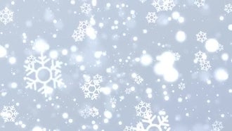 Christmas Snowflakes Background : Motion Graphics
