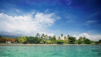 Tropical beach 2: Stock Video
