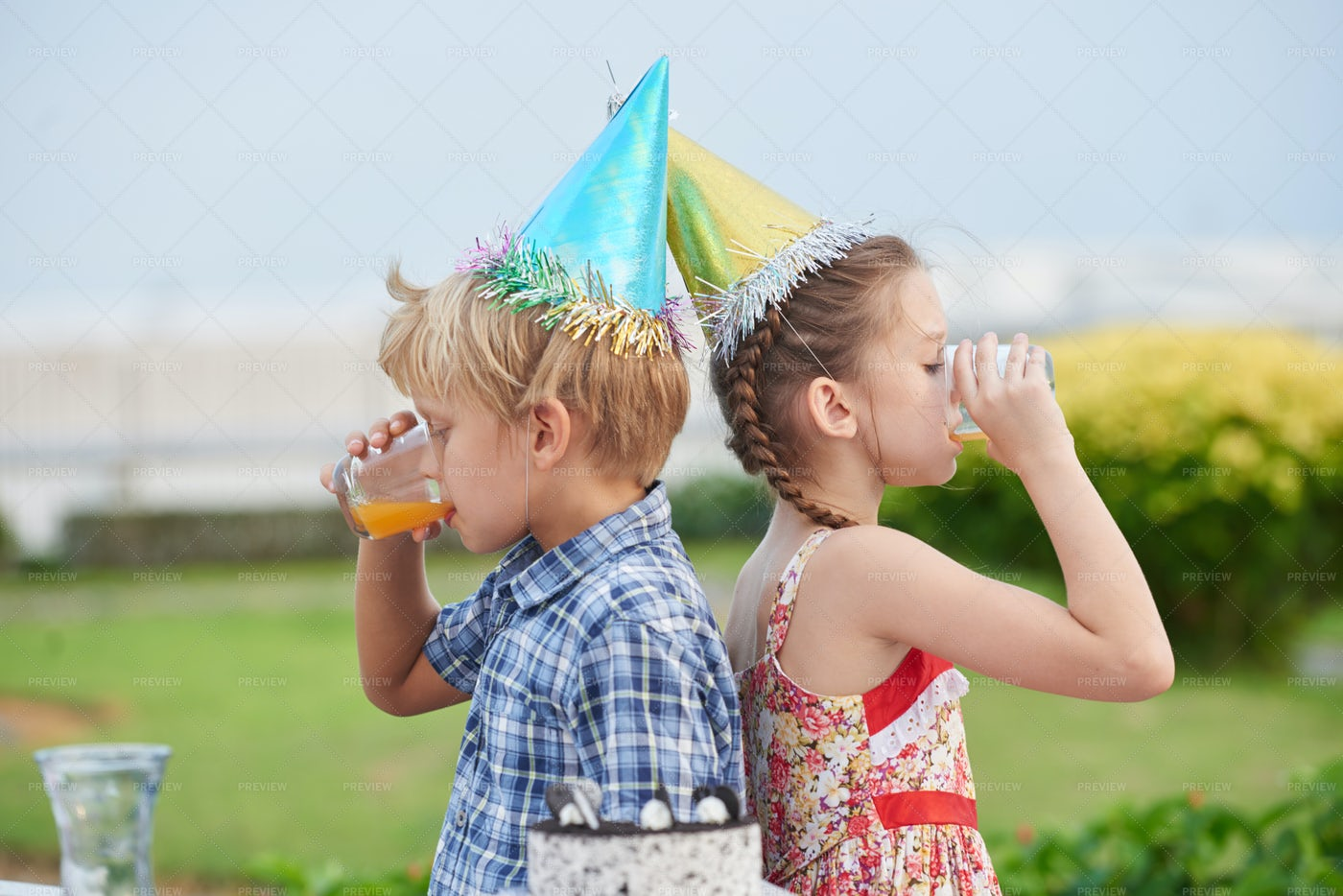 Best Friends At Outdoor Birthday...: Stock Photos