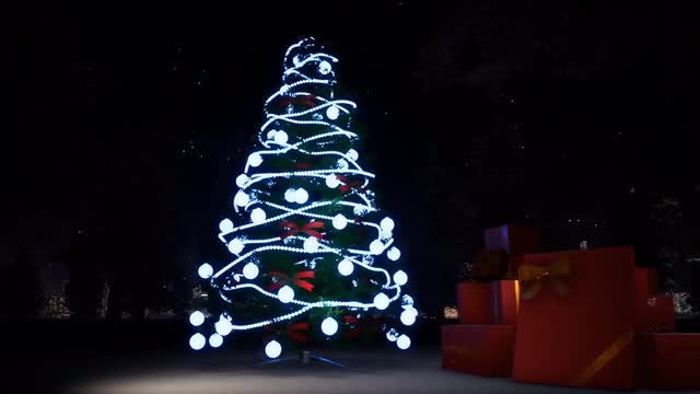 Christmas And Light Tree: Stock Motion Graphics