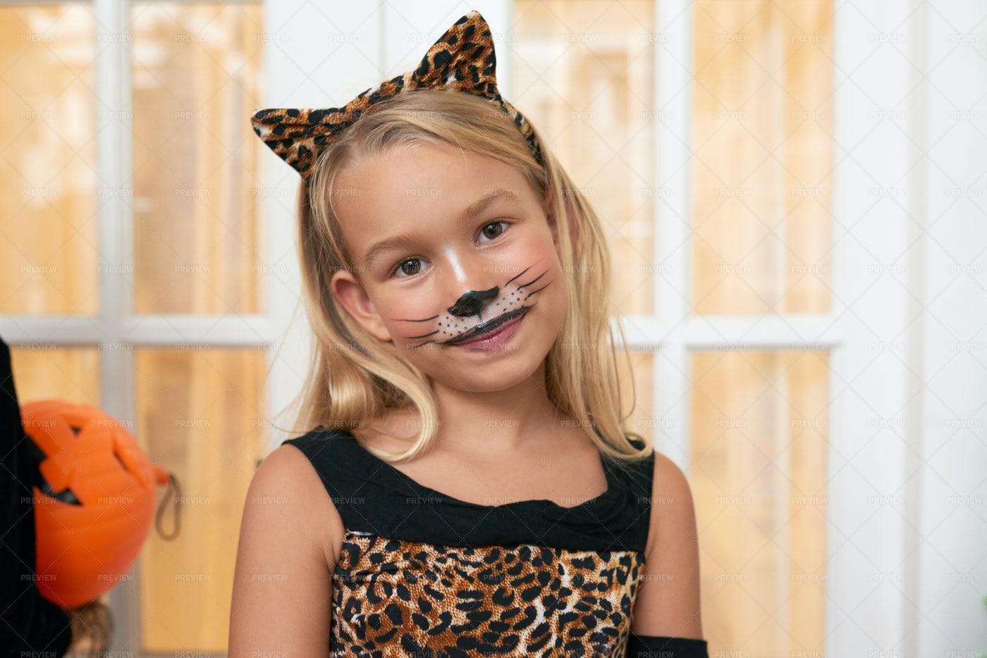 Girl In Halloween Cat Costume: Stock Photos