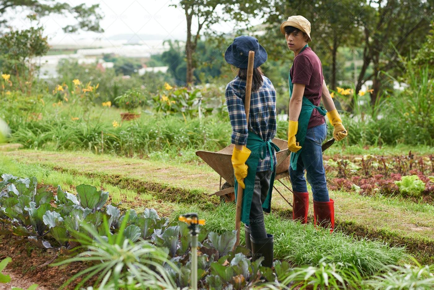 Gardening Couple: Stock Photos
