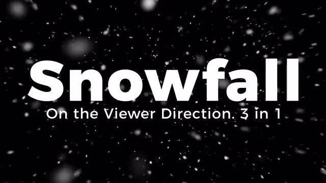 Snowfall. On the Viewer Direction.: Stock Motion Graphics