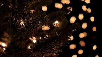 Christmas Tree Lights: Stock Footage