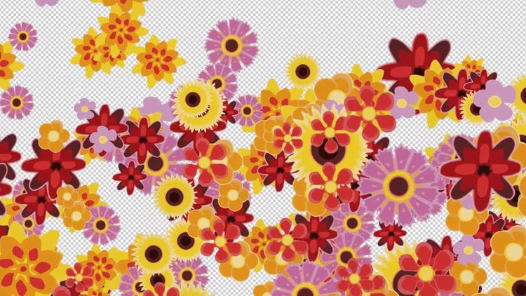 Flowers Transition 4K: Motion Graphics