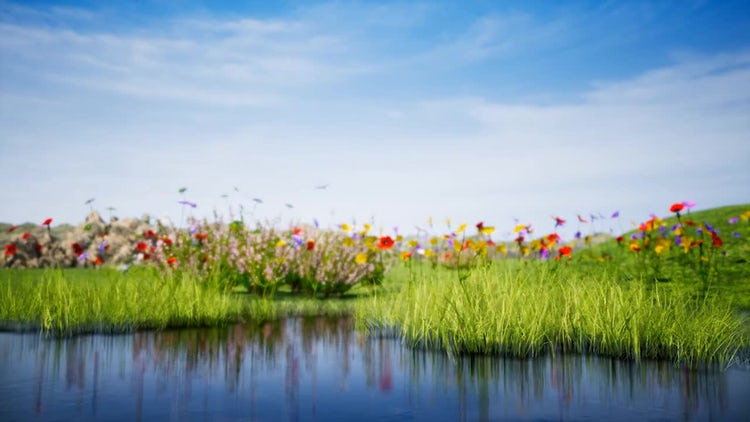 Summer Landscape with Lake 4K: Stock Motion Graphics