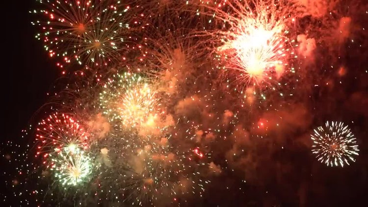 Colorful firework: Stock Video
